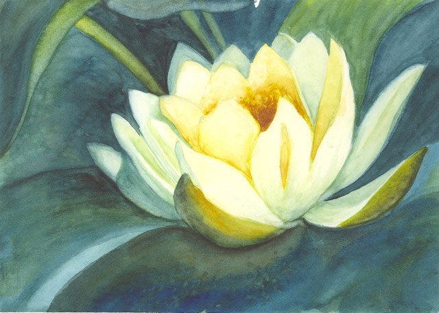 BEIJING LOTUS - SOLD