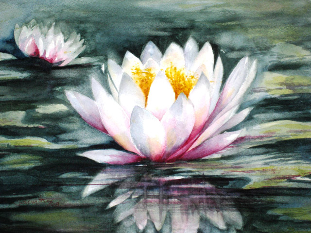WHITE WATER LILY - SOLD