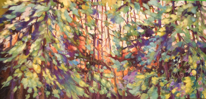 SOLD- SUNSHINE THROUGH THE CEDARS