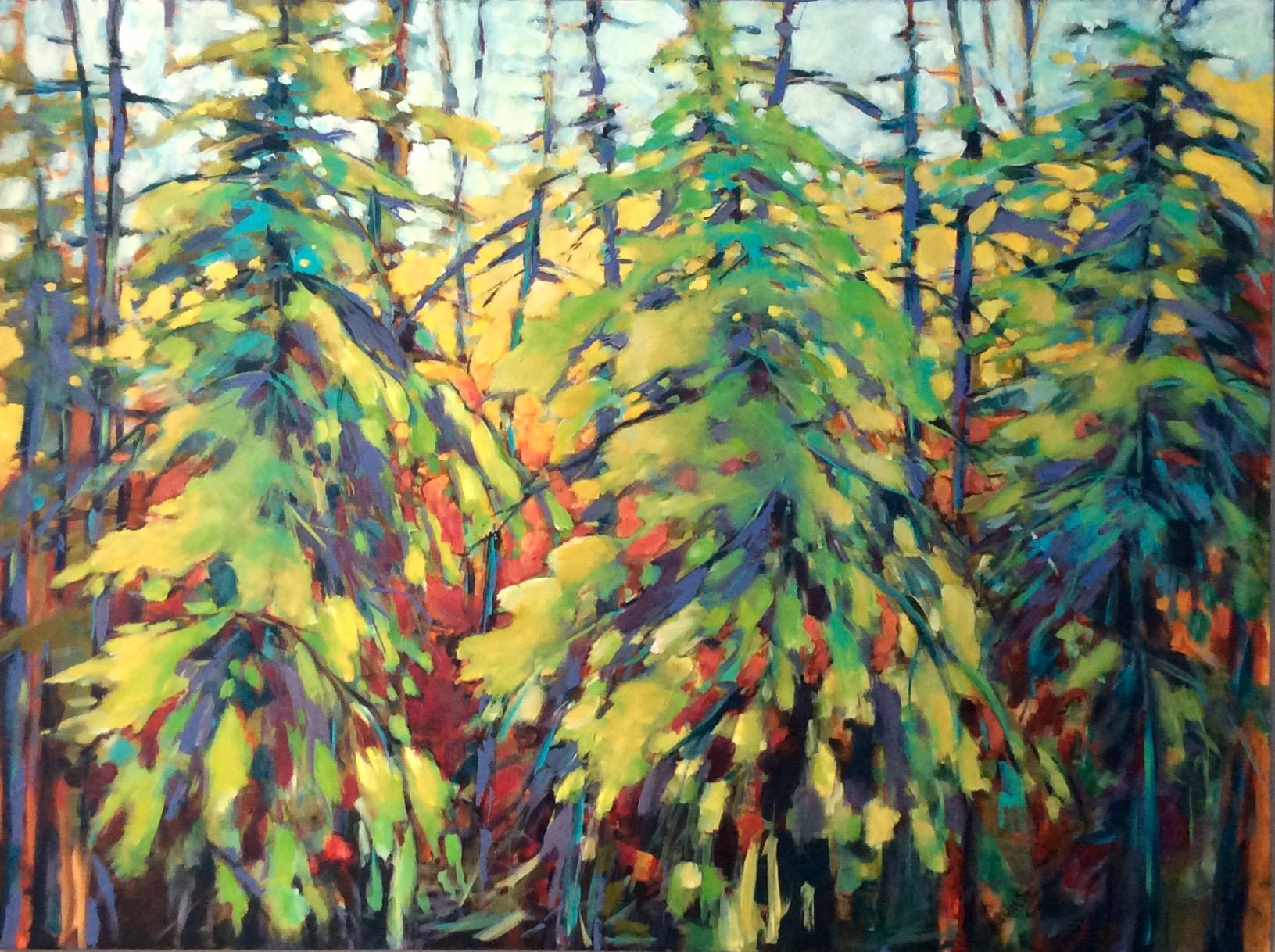SPLENDOUR IN THE FOREST